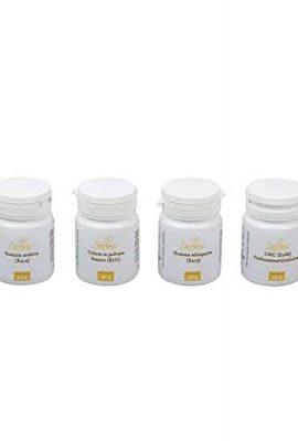 Gomma-adragante-Decora-40-grammi-farina-per-gelato-0